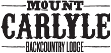 mt-carlyle-logo
